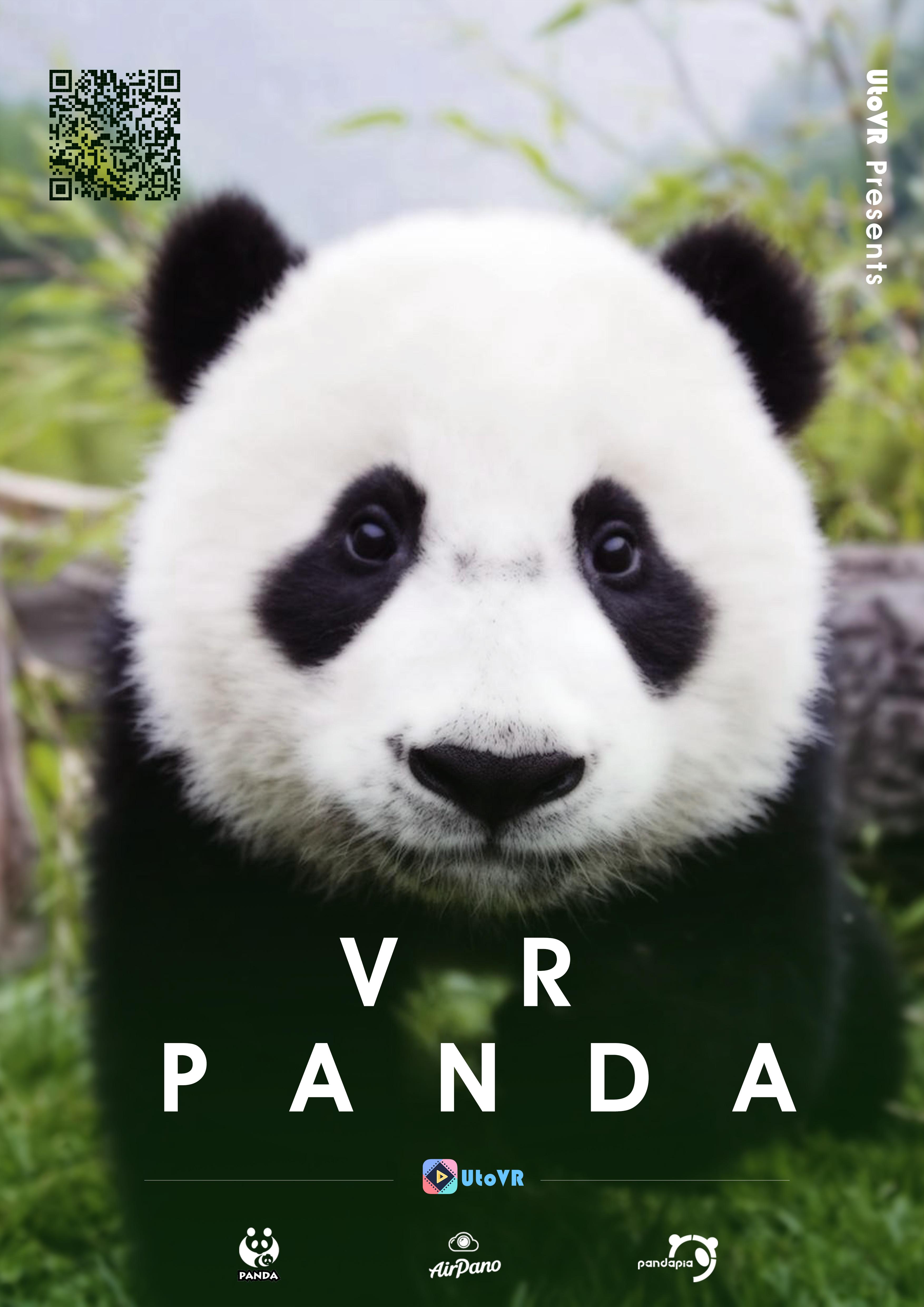 Picture PandaVR